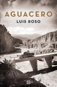 Libro: Aguacero - Roso, Luis