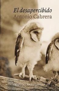 Libro: El desapercibido - Cabrera Serrano, Antonio