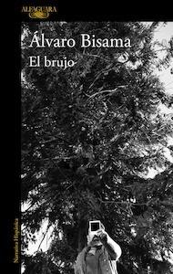 Libro: El brujo - Bisama, Alvaro