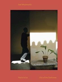 Libro: Hacia la luz. - Meyerowitz, Joel